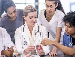 Quais são os conteúdos de Medicina? Entenda aqui!