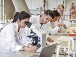 Qual é a diferença entre Ciências Médicas e Medicina? Entenda!