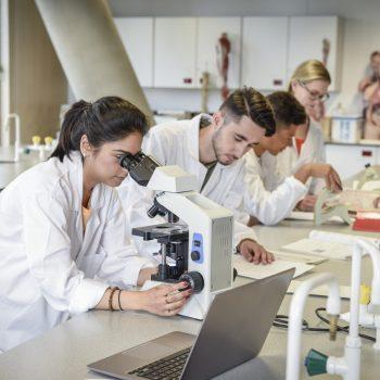 diferença entre ciências médicas e medicina