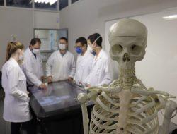 Ligas Acadêmicas da Medicina: por que participar?